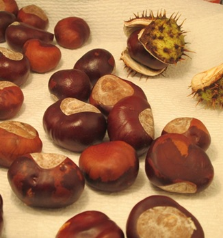 Chestnuts1